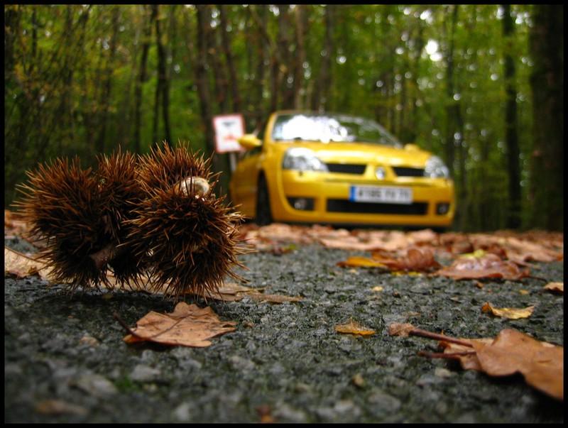 [Jérôme s16] Clio RS 2004 Clio_RS2004_005